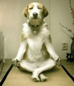 Image result for meditating
