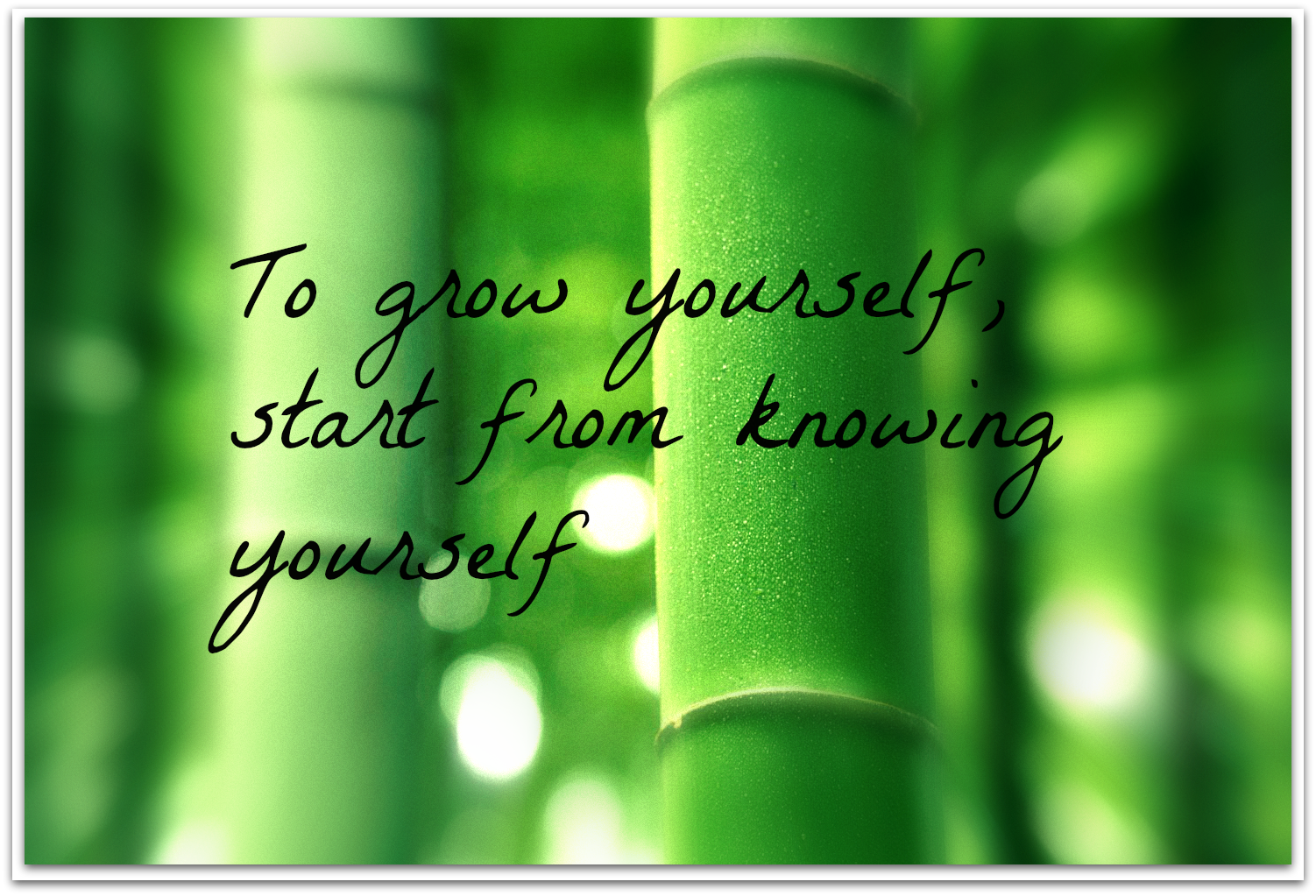 615678768-personal-growth-quote.png