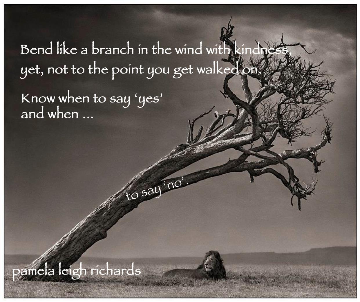 Lion-Tree-Bending-like-a-branch-pamela-quote.jpg