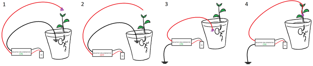 Controlled%20plant%20experiment.png