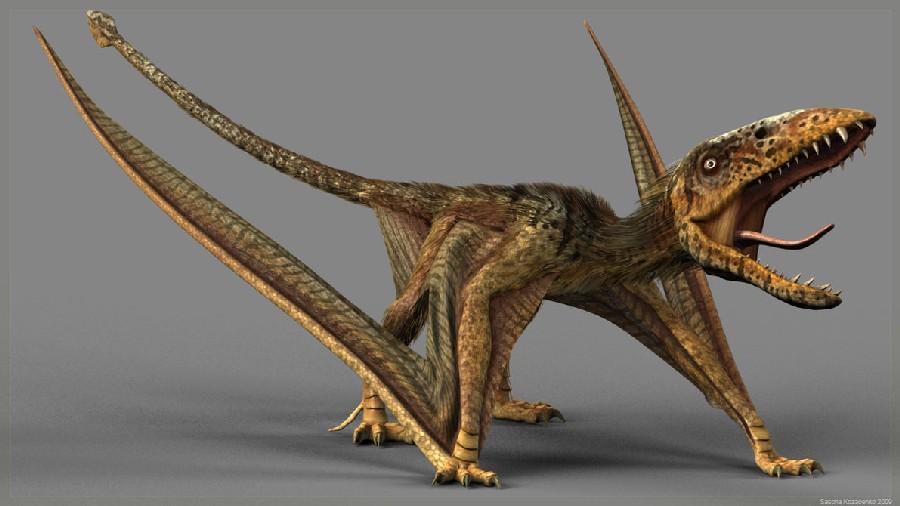 """Image result for dimorphodon"""""""