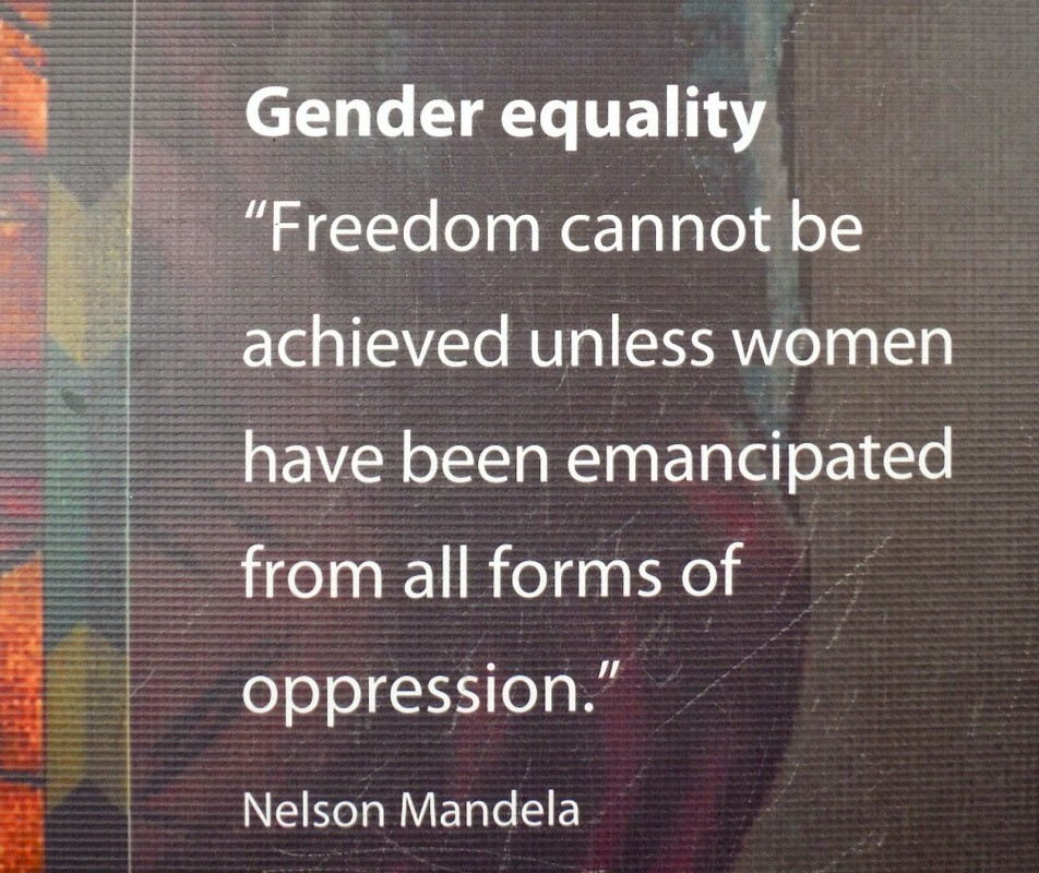 famous-gender-equality-quote-1-picture-quote-1.jpg
