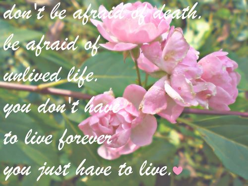dont-be-afraid-of-life-flowers-quote.jpg