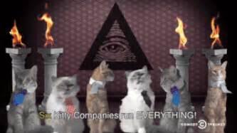 Image result for cat freemason