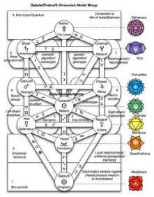 Image result for maps of consciousness
