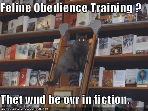 funny-pictures-librarian-cat-tells-it-li