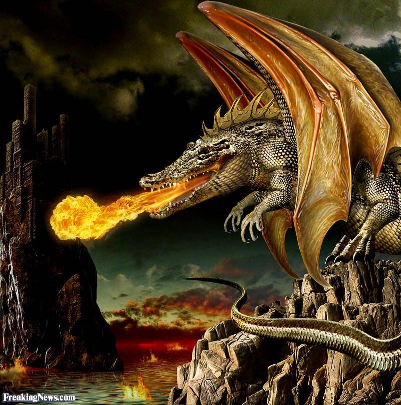 Crocodile-Dragon--93688.jpg