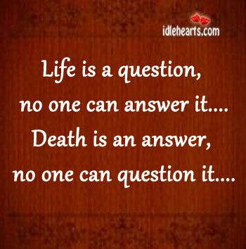 Life-is-a-question-no-one-can-answer-it.jpg
