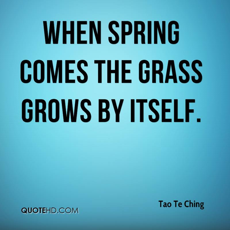 tao-te-ching-quote-when-spring-comes-the-grass-grows-by-itself.jpg