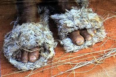 Aboriginal+footwear.jpg