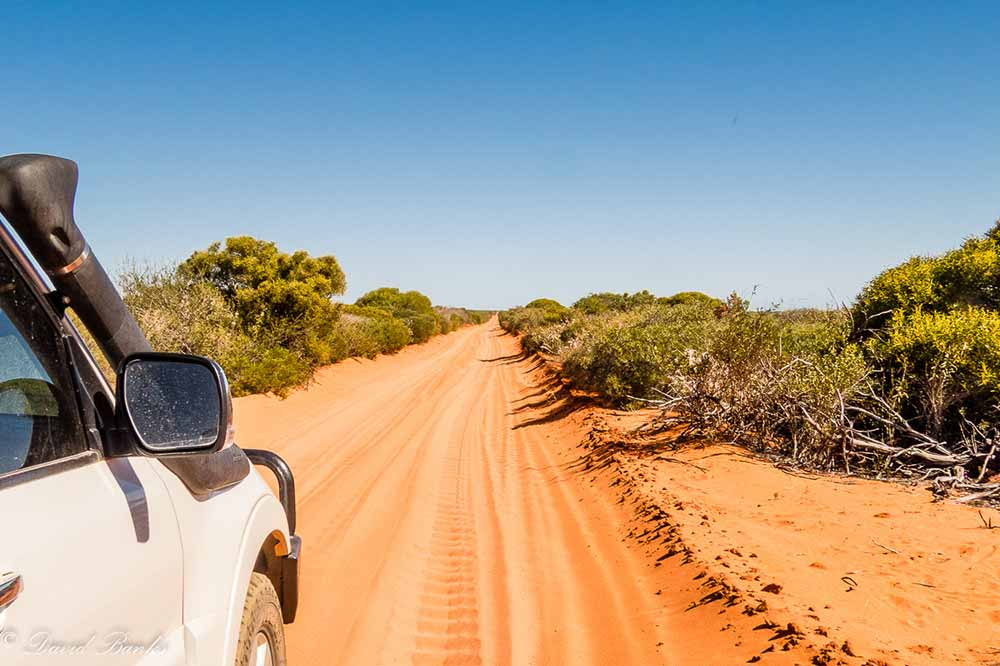 Driving-the-Cape-Peron-Road.jpg