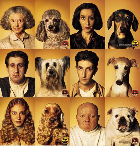 dogsownerslook-likedogs.jpg