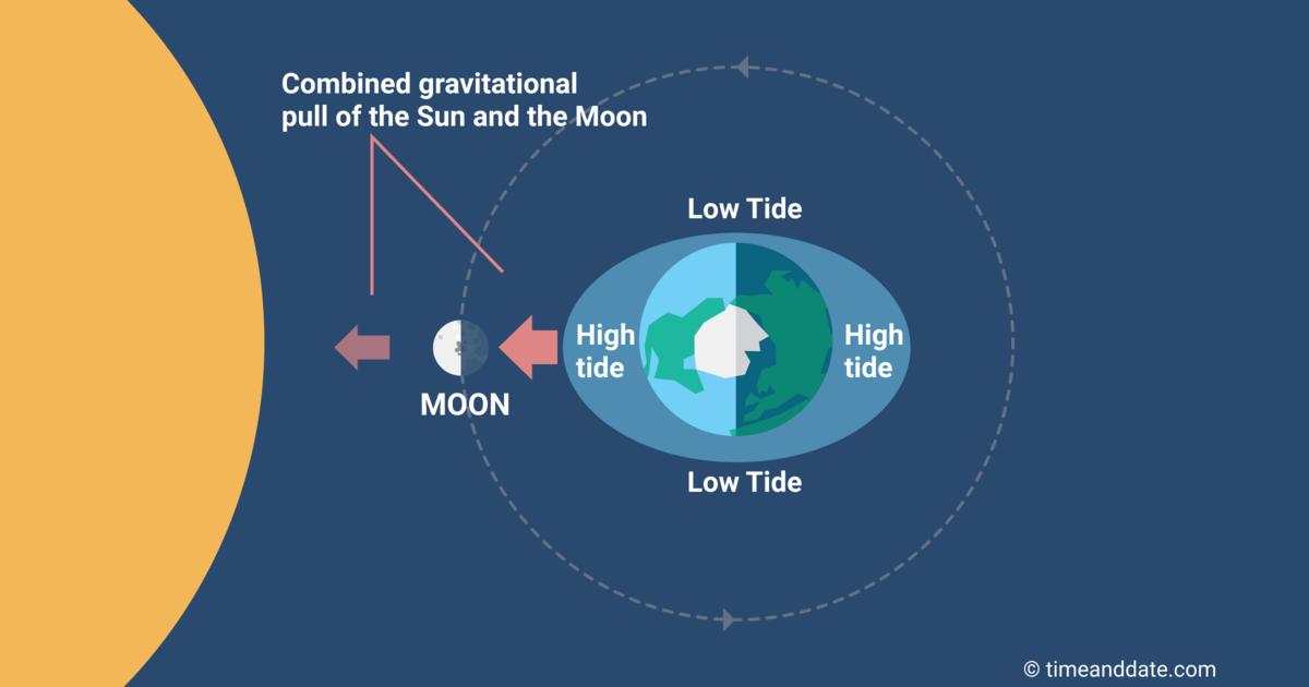 tides-new-moon.png?1