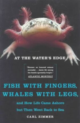 """Image result for fingers in a fishfish with legs"""""""