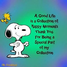92 Best Snoopy Quotes images | Snoopy quotes, Snoopy, Snoopy love