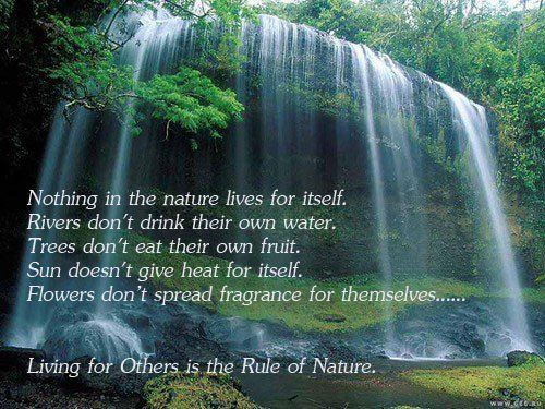 Nothing in nature lives for itself. Rivers don't drink their own ...