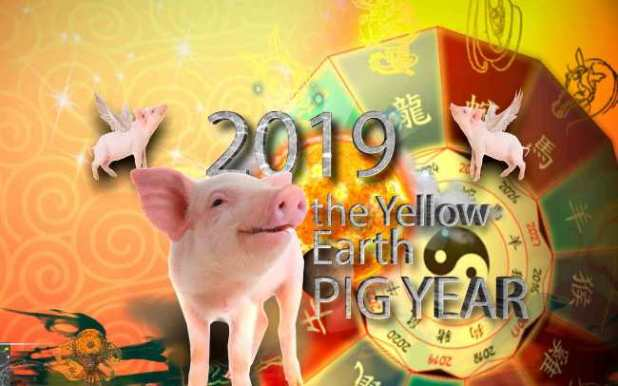 chinese-new-year-2019-earth-pig-1.jpg?re
