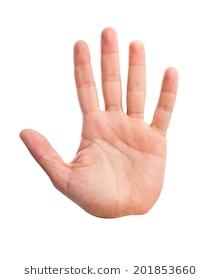 hand-palm-260nw-201853660.jpg