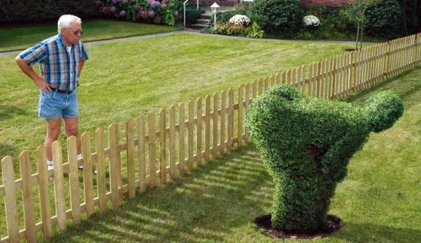 Image result for rude topiary