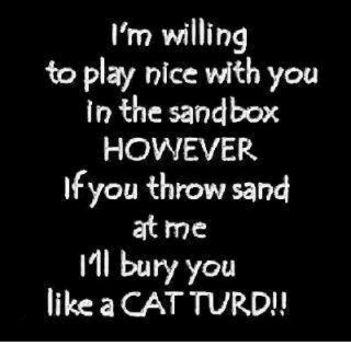 Memes, 🤖, and Cat: I'm willing  to play nice with you  in the sandbox  HOWEVER  If you throw sand  at me  IMI bury you  like a CAT TURD!