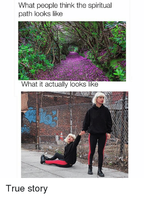 Memes, True, and True Story: What people think the spiritual  path looks like  What it actually looks like True story