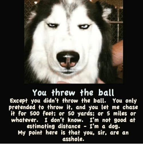 you-threw-the-ball-except-you-didnt-thro