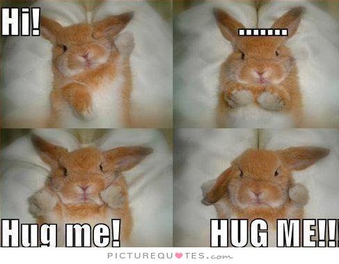 Hi! Hug me! Hug me!. Picture Quotes.