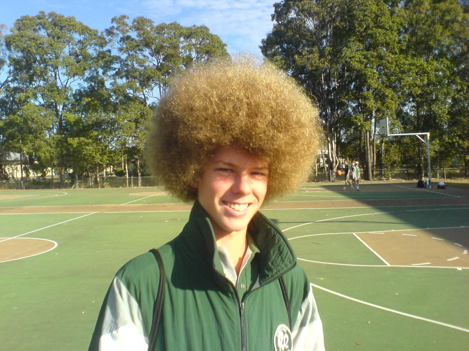 Image result for white guy  afro hairdo