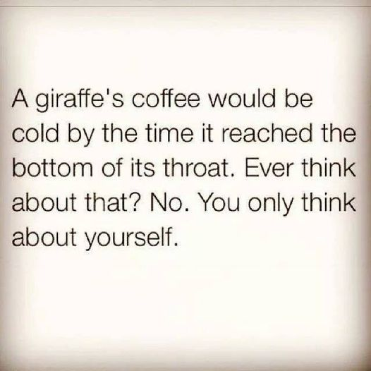 Image may contain: text that says 'A giraffe's coffee would be cold by the time it reached the bottom of its throat. Ever think about that? No. You only think about yourself.'