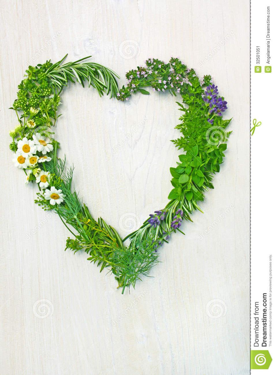 fresh-herbs-shape-love-heart-different-g