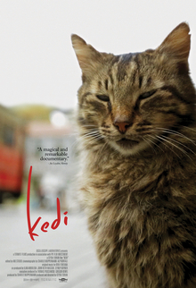 Kedi-film-poster.jpg