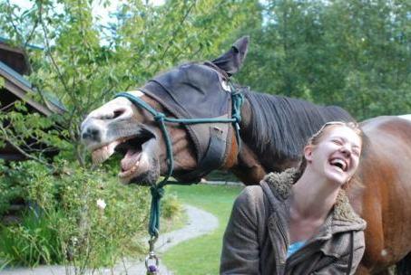 funniest pictures taken