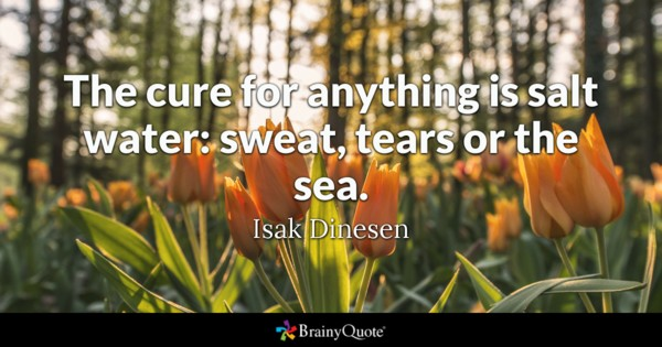 The cure for anything is salt water: sweat, tears or the sea. - Isak Dinesen