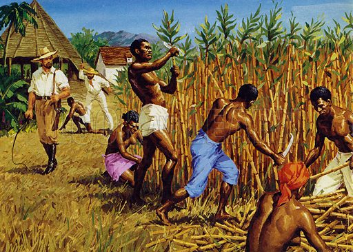 B339365_Slaves-working-on-a-plantation-i