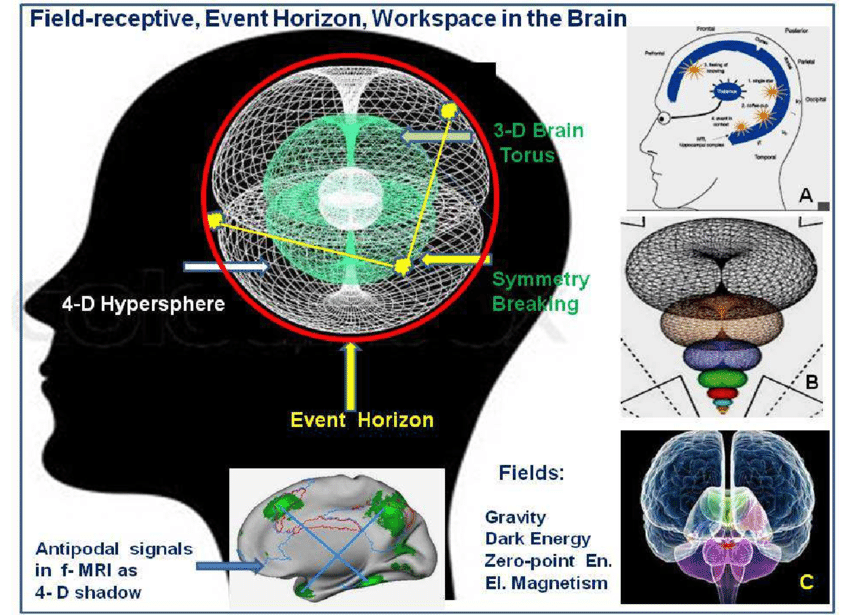 Field-receptive-event-horizon-model-of-consciousness-depicted-in-various.png
