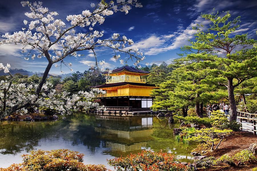 Image result for gold temple, japan