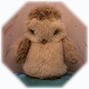 Owledge's Photo