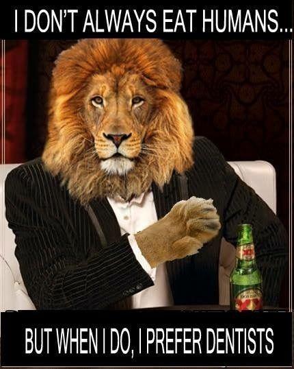 54aabd65e96a9326006aa56c6859def1--lion-art-funny-ha-ha.jpg.89a68e29df09fc2b5ab15e53def97ea6.jpg