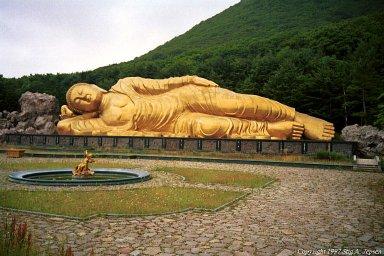 buddha.jpg.cdfa35d618d5debe56de8df6e2667f0c.jpg