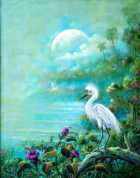 mystical-mangroves-keith-stillwagon.thumb.jpg.859680dc36a4239a3c8e1d993a81c5dd.jpg