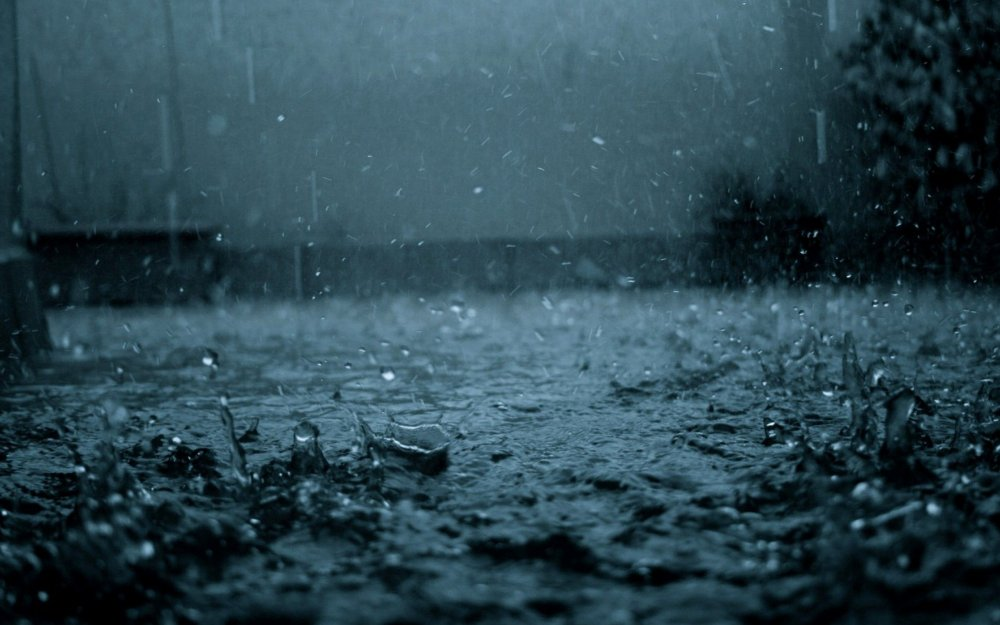 wet.jpg
