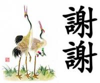 soaring crane's Photo